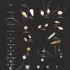 Rhinestones sizes & shapes